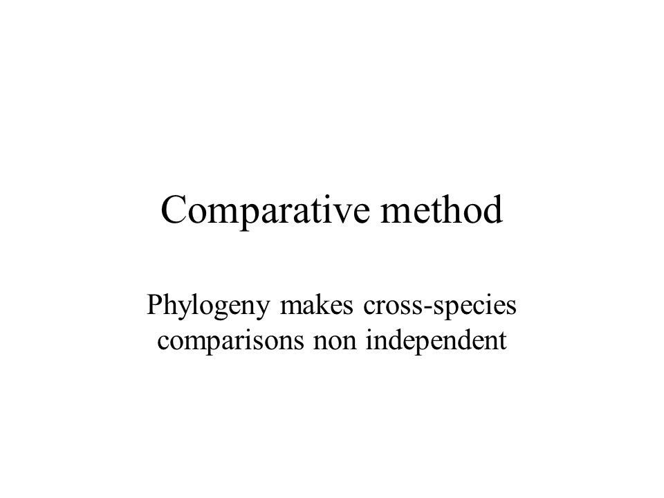 Comparative method Phylogeny makes cross-species comparisons non independent