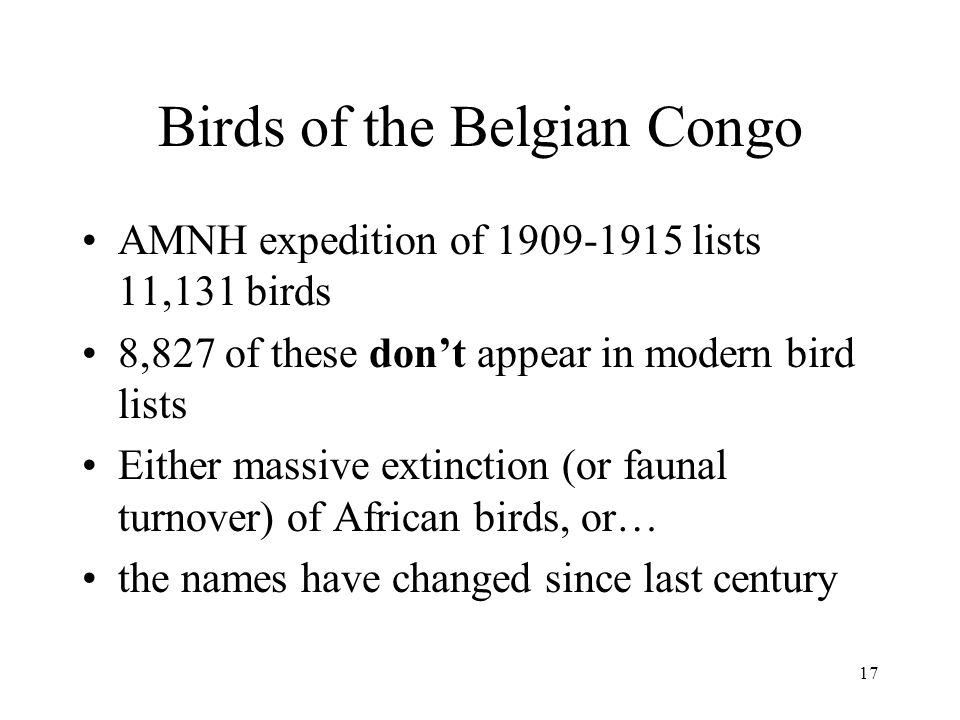 17 Birds of the Belgian Congo AMNH expedition of lists 11,131 birds 8,827 of these dont appear in modern bird lists Either massive extinction (or faunal turnover) of African birds, or… the names have changed since last century