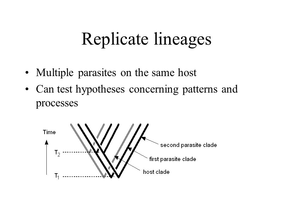 Replicate lineages Multiple parasites on the same host Can test hypotheses concerning patterns and processes