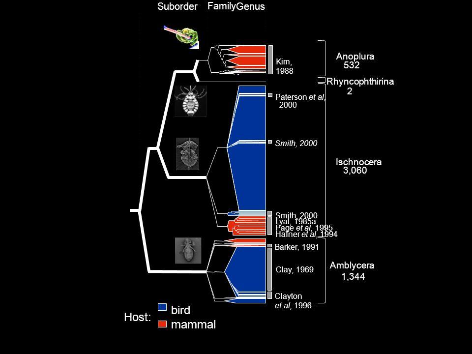 Genus Family Suborder Anoplura 532 Ischnocera 3,060 1,344 Amblycera bird mammal Kim, 1988 Paterson et al, 2000 Smith, 2000 Barker, 1991 Clayton et al, 1996 Page et al, 1995 Hafner et al, 1994 Lyal, 1985a Rhyncophthirina 2 Clay, 1969 Host: