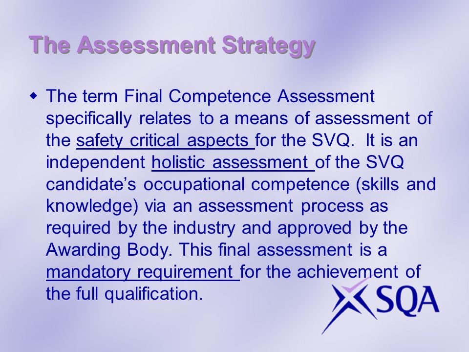 The Assessment Strategy cont.