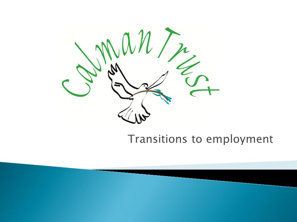 Transitions to employment