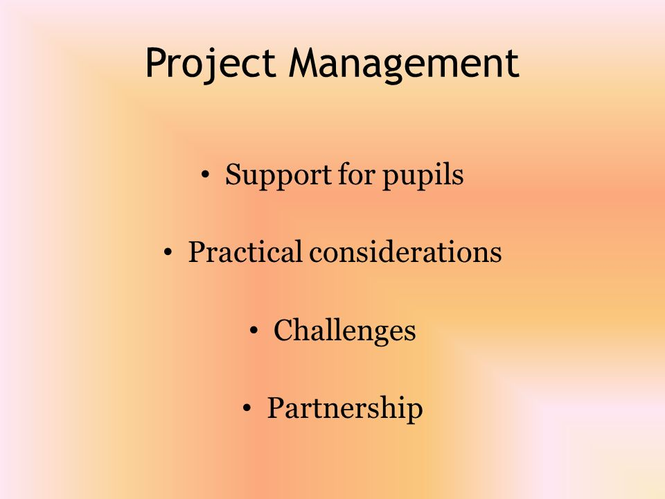 Project Management Support for pupils Practical considerations Challenges Partnership