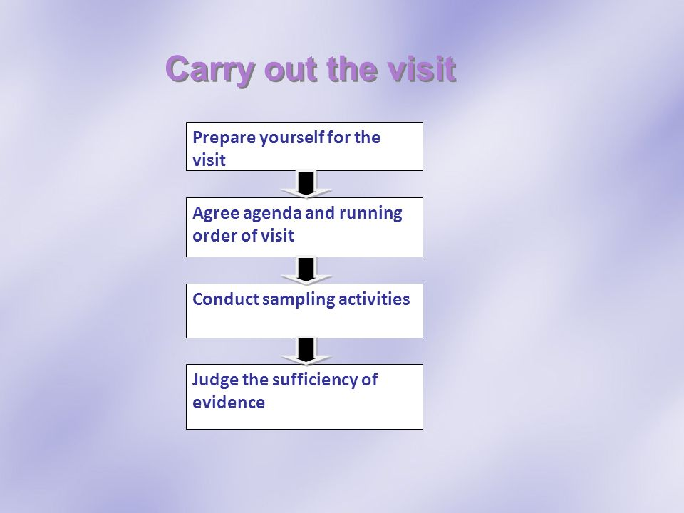 Carry out the visit Prepare yourself for the visit Agree agenda and running order of visit Conduct sampling activities Judge the sufficiency of eviden