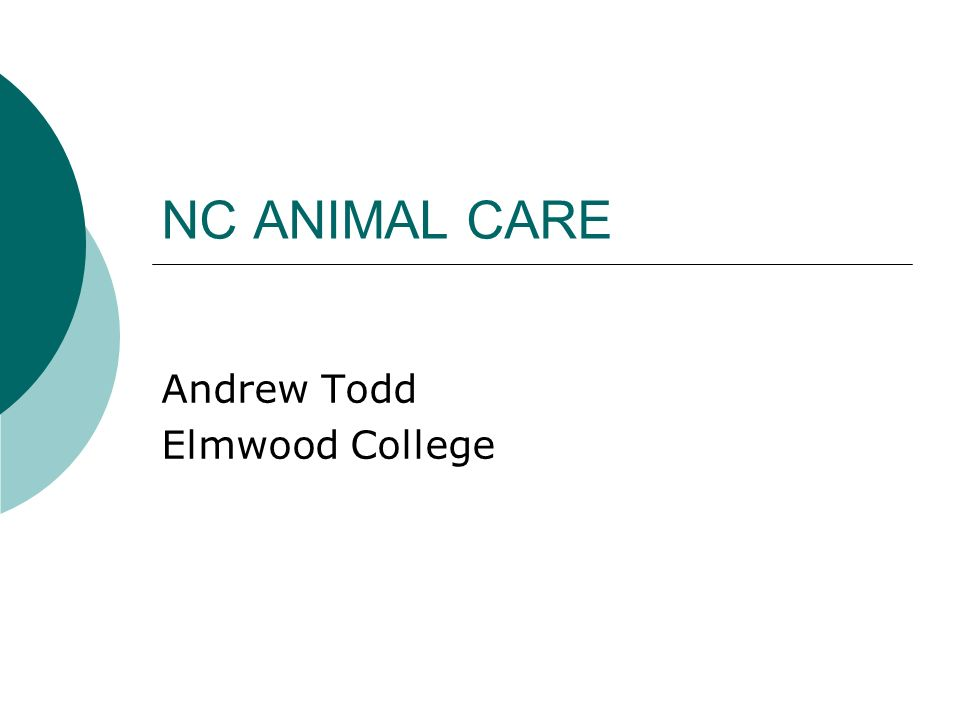 NC ANIMAL CARE Andrew Todd Elmwood College