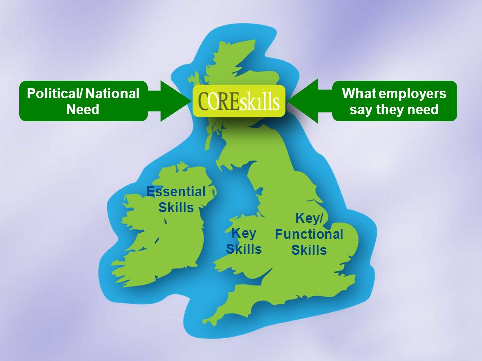 Key Skills Key/ Functional Skills Essential Skills Political/ National Need What employers say they need