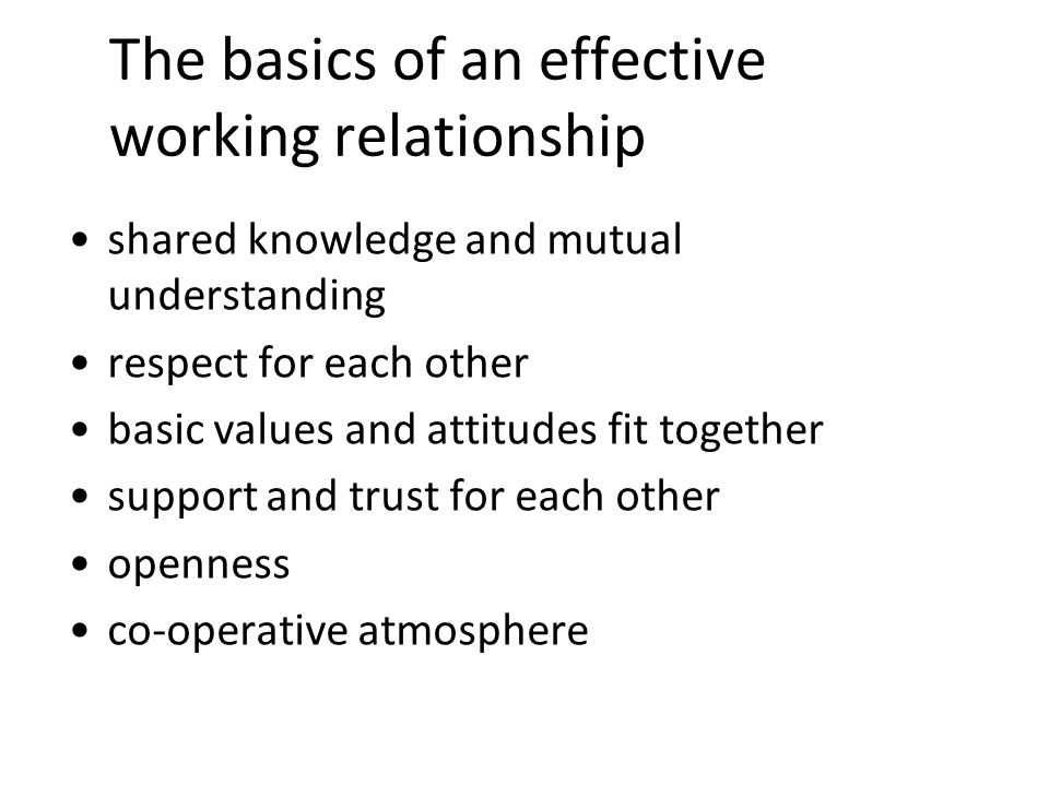 8 The basics of an effective working relationship shared knowledge and mutual understanding respect for each other basic values and attitudes fit toge