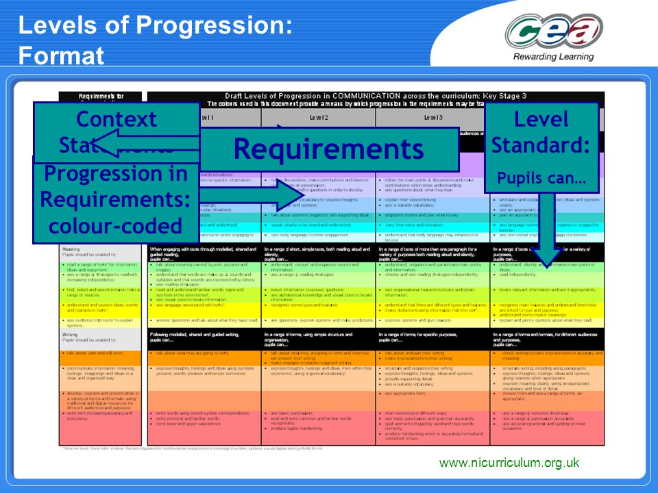 Levels of Progression: Format www.nicurriculum.org.uk Progression in Requirements: colour-coded Level Standard: Pupils can… Context Statements Requirements