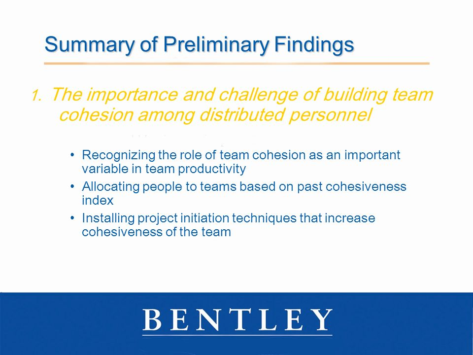 Summary of Preliminary Findings 1.