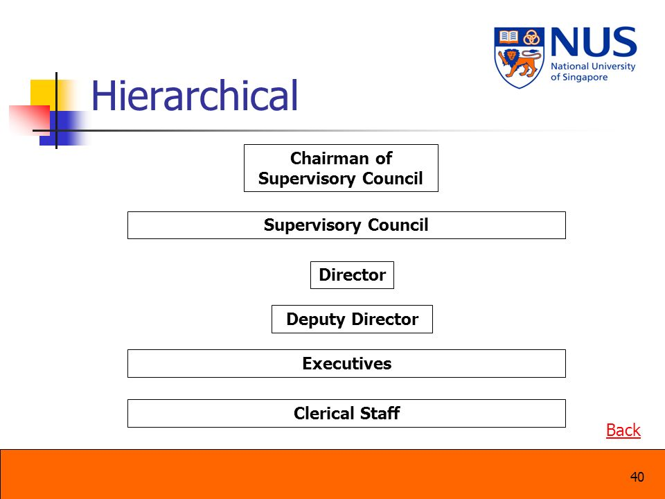 40 Hierarchical Supervisory Council Director Chairman of Supervisory Council Deputy Director Executives Clerical Staff Back