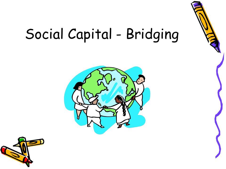 Social Capital - Bridging