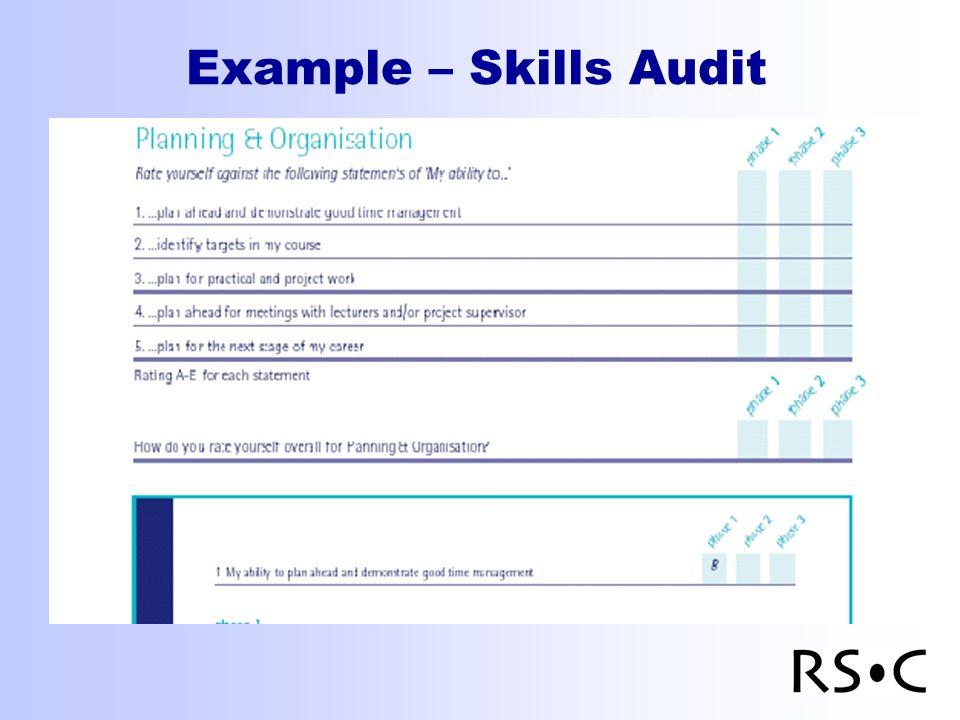Example – Skills Audit