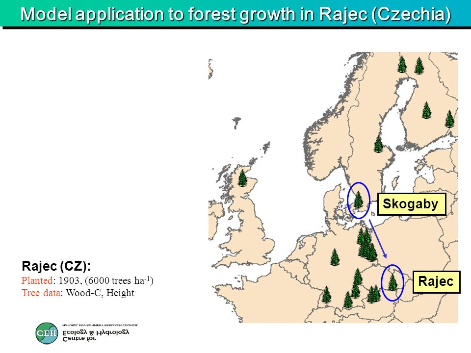 Model application to forest growth in Rajec (Czechia) Rajec (CZ): Planted: 1903, (6000 trees ha -1 ) Tree data: Wood-C, Height Skogaby Rajec