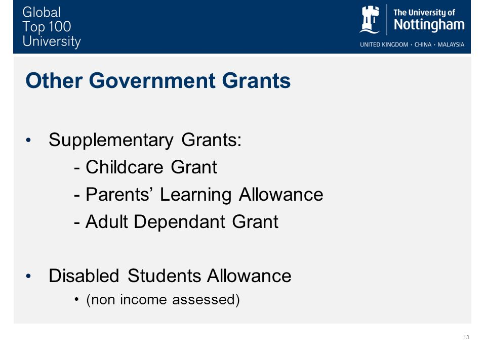 13 Other Government Grants Supplementary Grants: - Childcare Grant - Parents Learning Allowance - Adult Dependant Grant Disabled Students Allowance (n