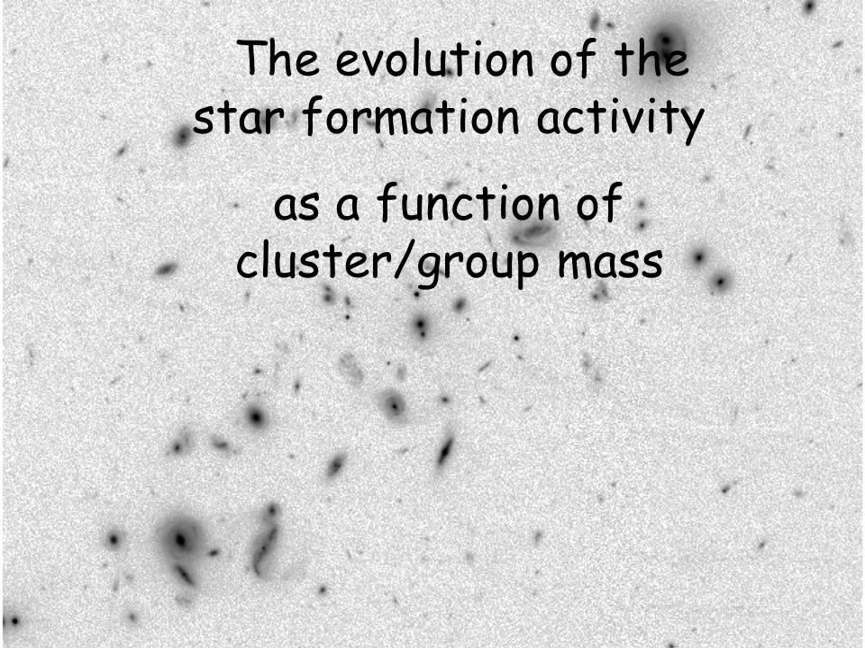 The evolution of the star formation activity as a function of cluster/group mass