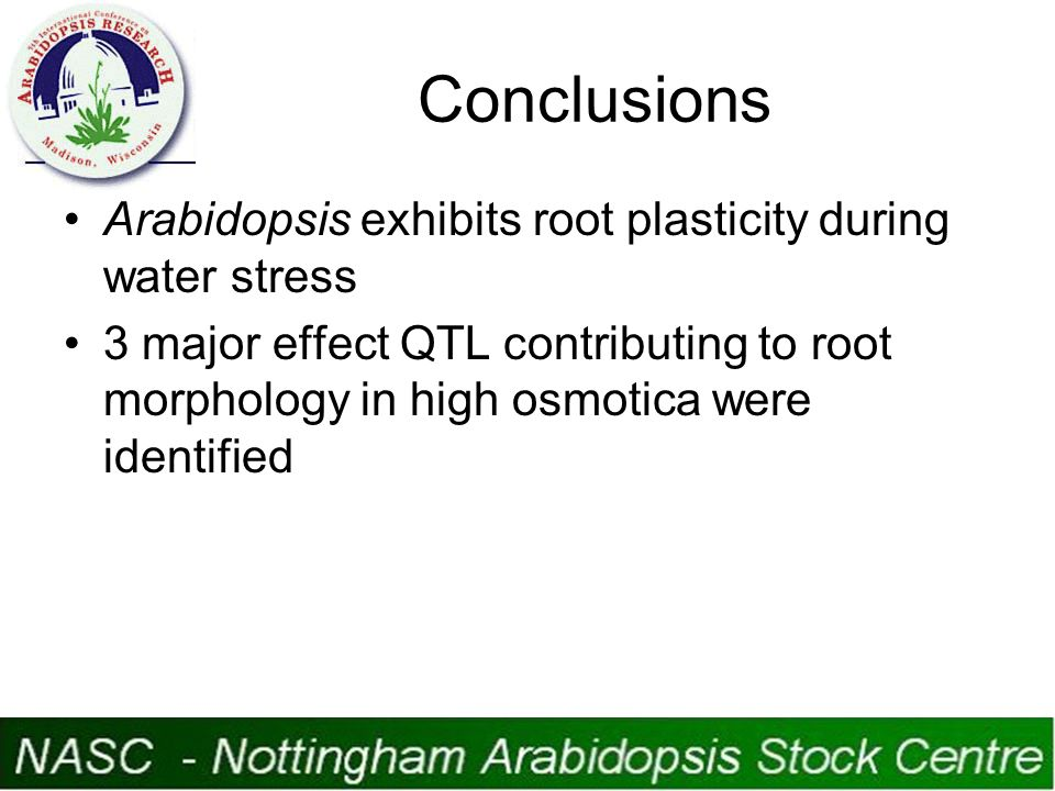 Conclusions Arabidopsis exhibits root plasticity during water stress 3 major effect QTL contributing to root morphology in high osmotica were identified