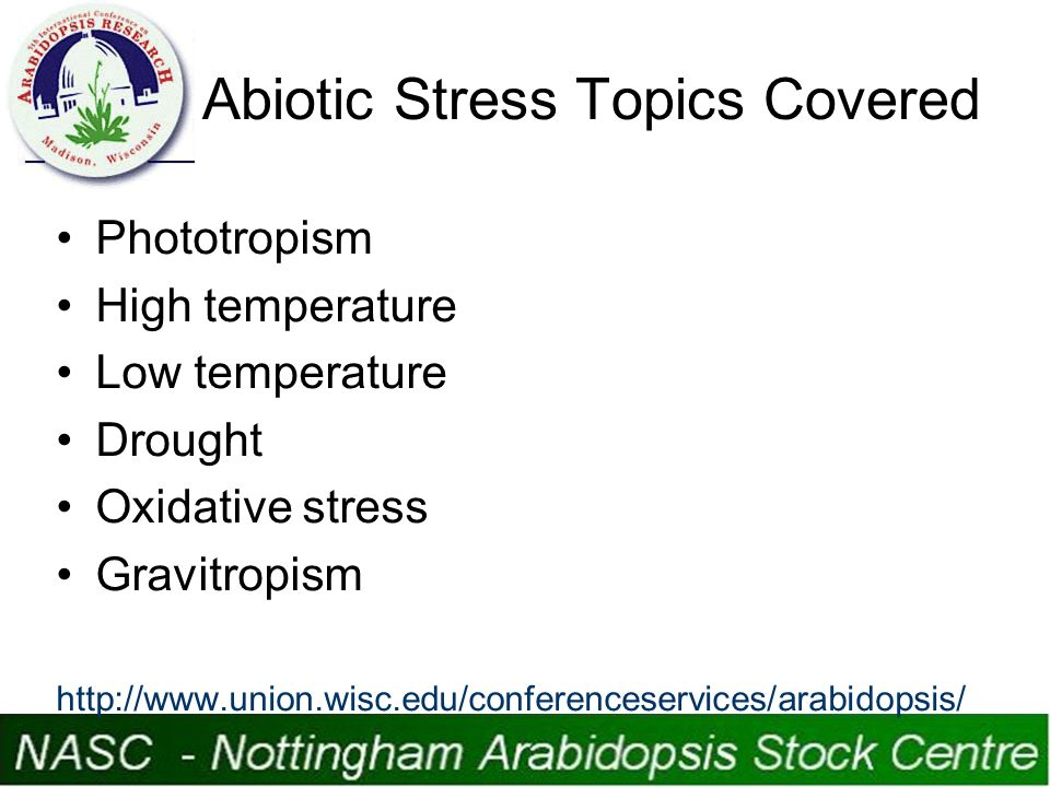 Abiotic Stress Topics Covered Phototropism High temperature Low temperature Drought Oxidative stress Gravitropism http://www.union.wisc.edu/conferenceservices/arabidopsis/