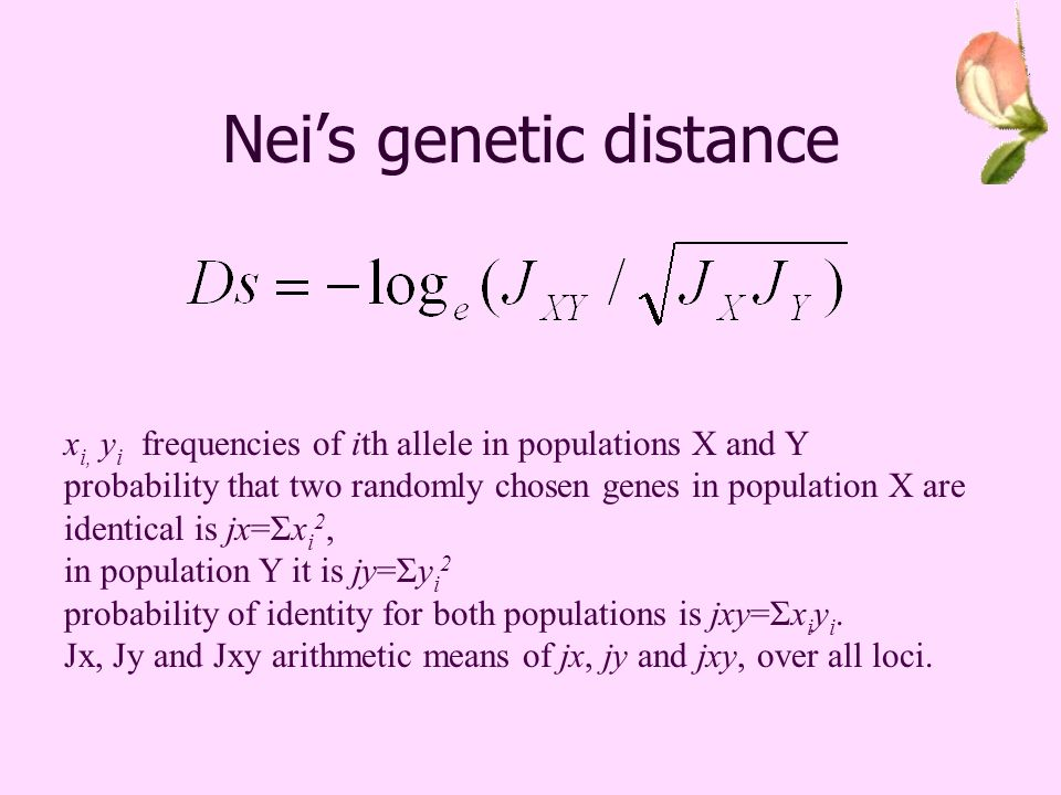 Neis genetic distance x i, y i frequencies of ith allele in populations X and Y probability that two randomly chosen genes in population X are identical is jx=Σx i 2, in population Y it is jy=Σy i 2 probability of identity for both populations is jxy=Σx i y i.