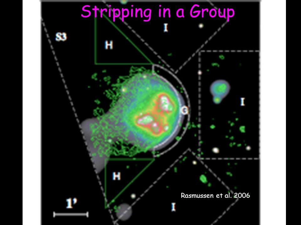 Rasmussen et al. 2006 Stripping in a Group