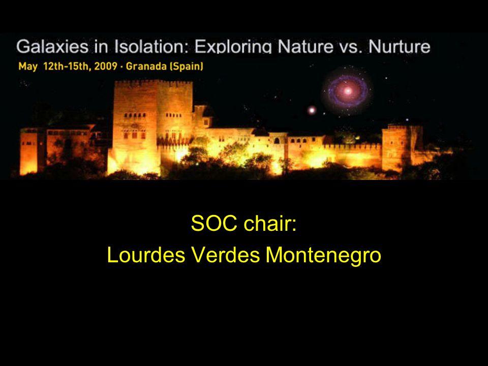 SOC chair: Lourdes Verdes Montenegro