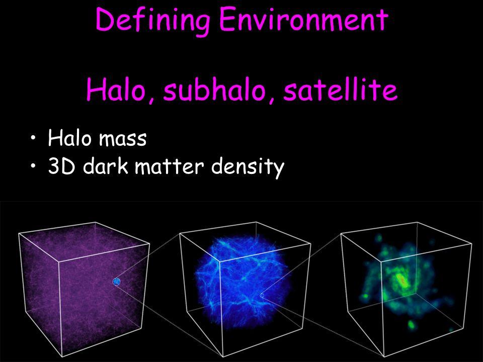 Defining Environment Halo, subhalo, satellite Halo mass 3D dark matter density