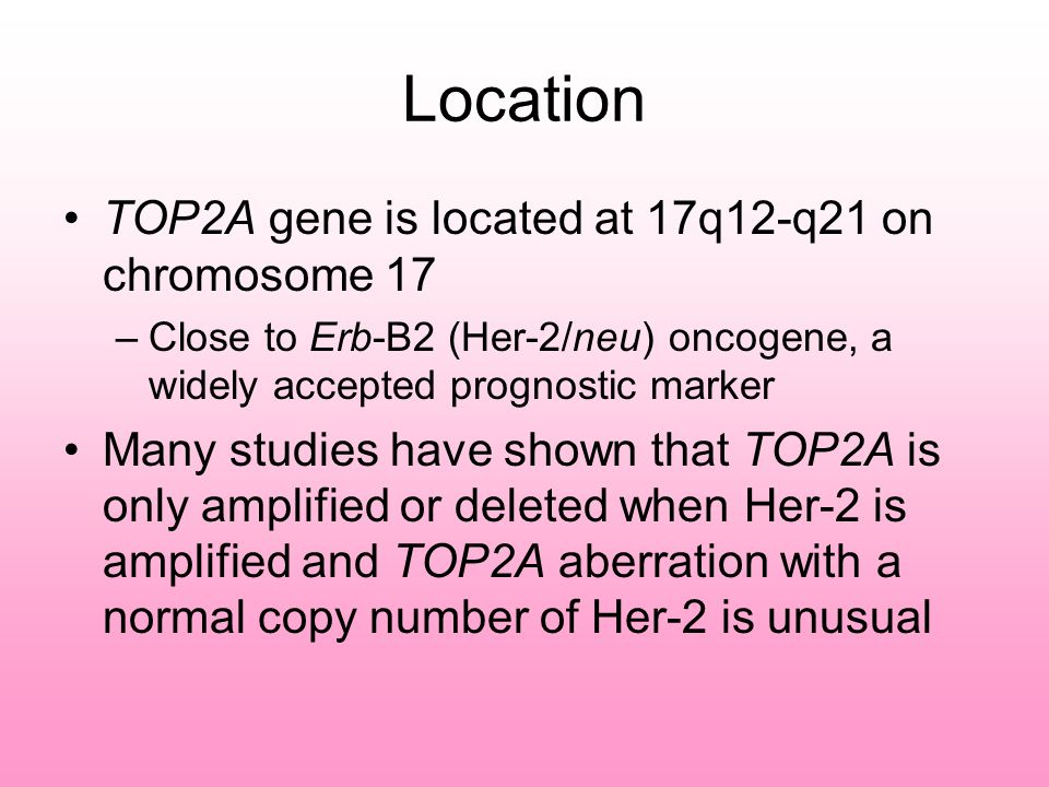 Location TOP2A gene is located at 17q12-q21 on chromosome 17 –Close to Erb-B2 (Her-2/neu) oncogene, a widely accepted prognostic marker Many studies have shown that TOP2A is only amplified or deleted when Her-2 is amplified and TOP2A aberration with a normal copy number of Her-2 is unusual
