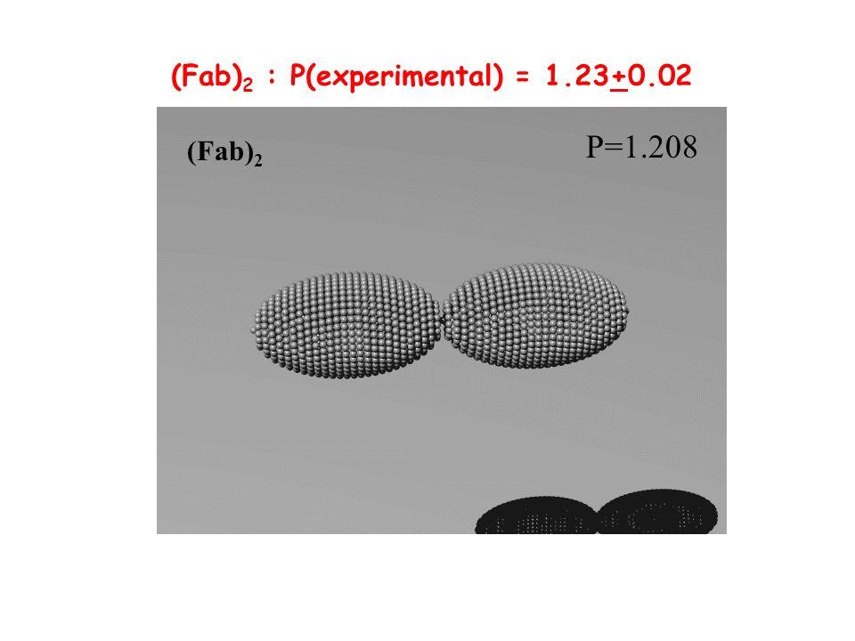 P=1.208 (Fab) 2 (Fab) 2 : P(experimental) = 1.23+0.02