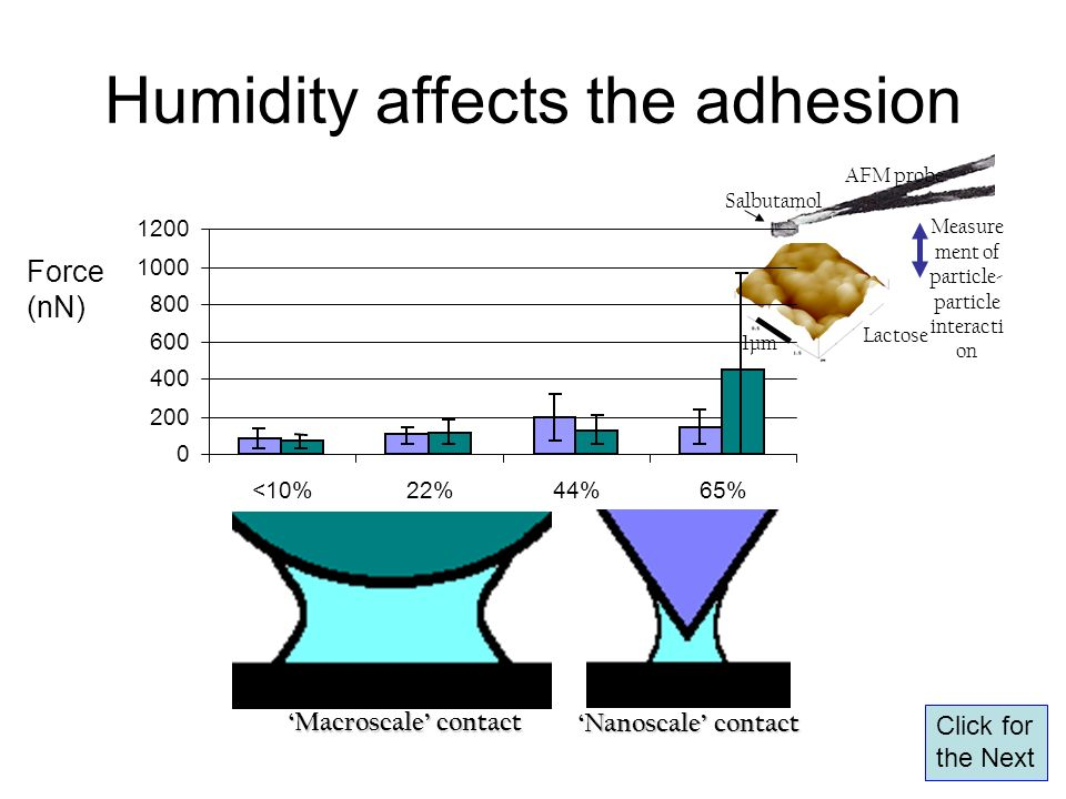 Humidity affects the adhesion AFM probe Salbutamol Measure ment of particle- particle interacti on Lactose 1µm Force (nN) 0 200 400 600 800 1000 1200