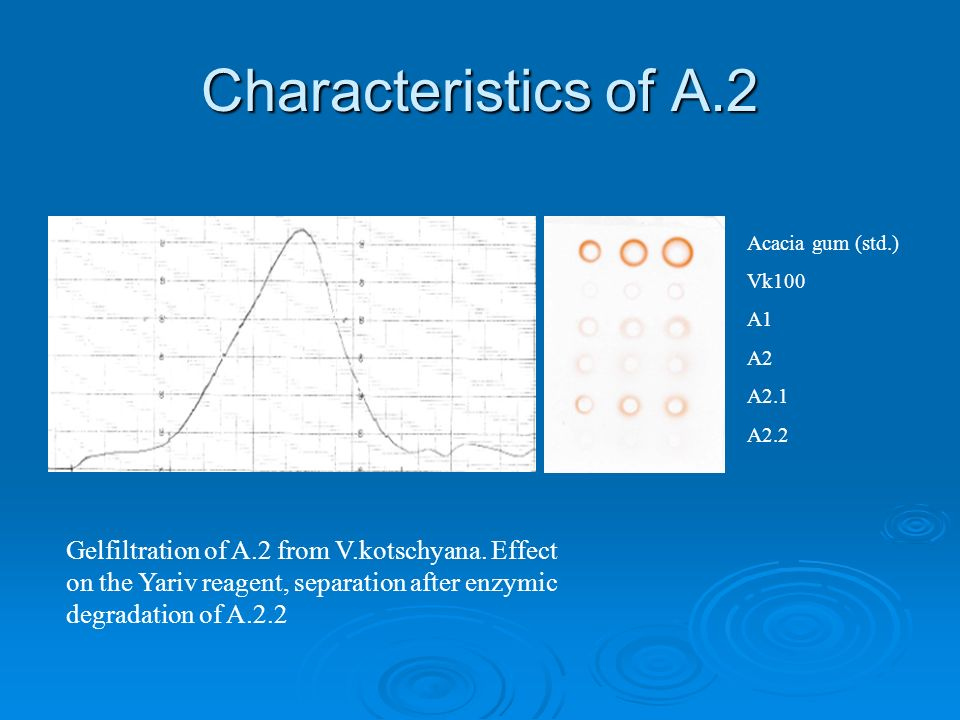 Characteristics of A.2 Acacia gum (std.) Vk100 A1 A2 A2.1 A2.2 Gelfiltration of A.2 from V.kotschyana.