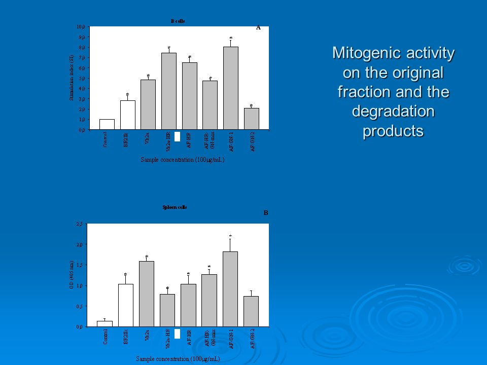 Mitogenic activity on the original fraction and the degradation products