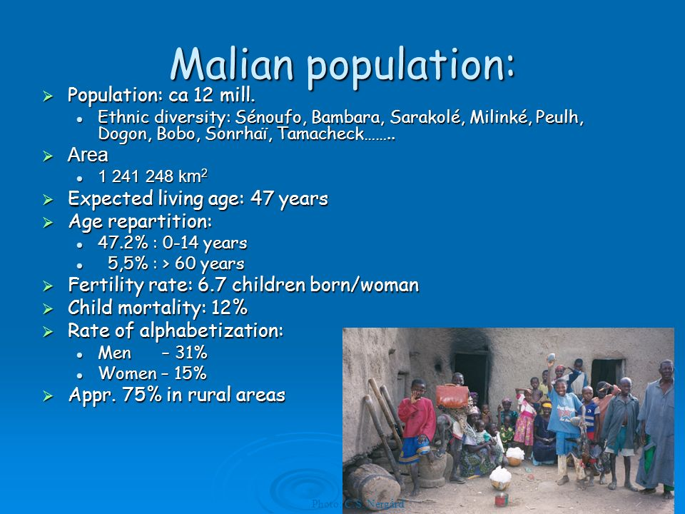 Malian population: Population: ca 12 mill. Population: ca 12 mill.
