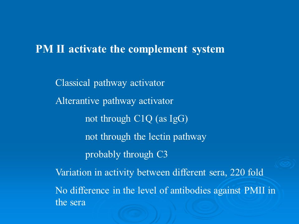 PM II activate the complement system Classical pathway activator Alterantive pathway activator not through C1Q (as IgG) not through the lectin pathway probably through C3 Variation in activity between different sera, 220 fold No difference in the level of antibodies against PMII in the sera