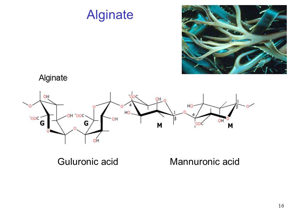 16 Alginate Mannuronic acidGuluronic acid
