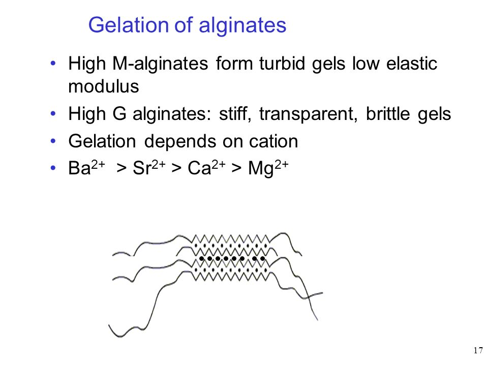 17 Gelation of alginates High M-alginates form turbid gels low elastic modulus High G alginates: stiff, transparent, brittle gels Gelation depends on