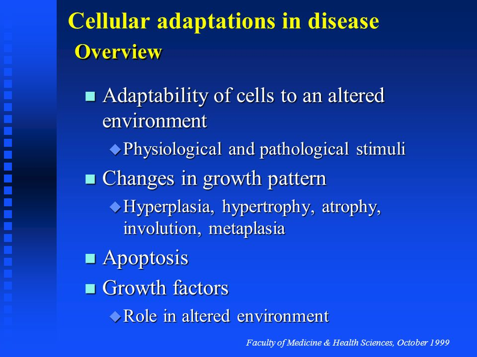 Faculty of Medicine & Health Sciences, October 1999 Cellular adaptations in disease Apoptosis next stage...