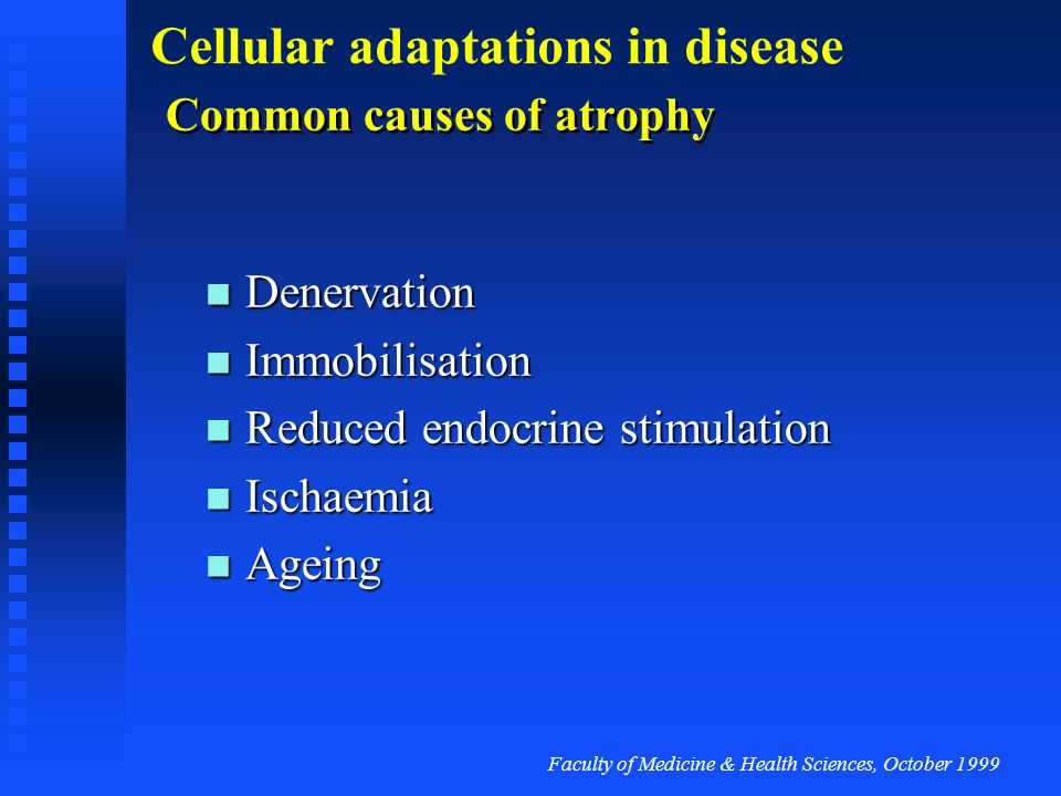 Faculty of Medicine & Health Sciences, October 1999 Cellular adaptations in disease Reduced demand for cell activity Reduction in the volume of a tiss