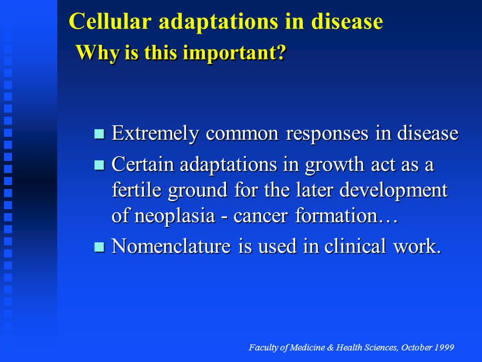 Faculty of Medicine & Health Sciences, October 1999 Cellular adaptations in disease Summary Cells adapt to altered environment Cells adapt to altered environment Metabolic adaptation Metabolic adaptation Cell stress response Cell stress response Changes in growth pattern Changes in growth pattern Hyperplasia, hypertrophy, atrophy, involution, metaplasia Hyperplasia, hypertrophy, atrophy, involution, metaplasia Growth factors, controlling proliferation or cell death, play a key role in cell adaptations in disease Growth factors, controlling proliferation or cell death, play a key role in cell adaptations in disease