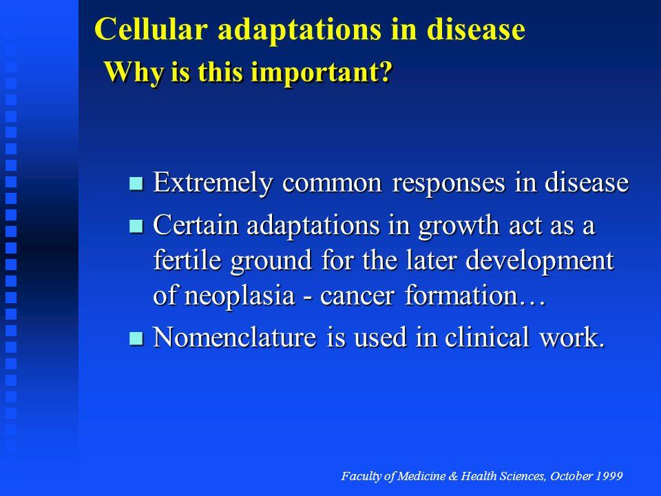 Faculty of Medicine & Health Sciences, October 1999 Cellular adaptations in disease Apoptosis final event...