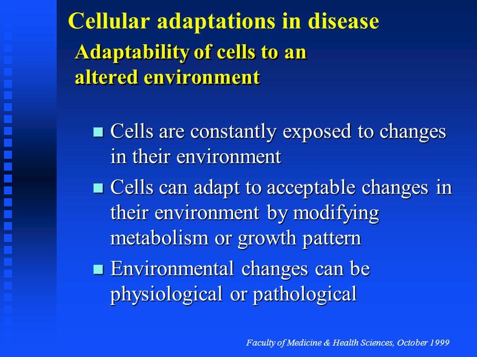 Faculty of Medicine & Health Sciences, October 1999 Cellular adaptations in disease Apoptosis triggers….