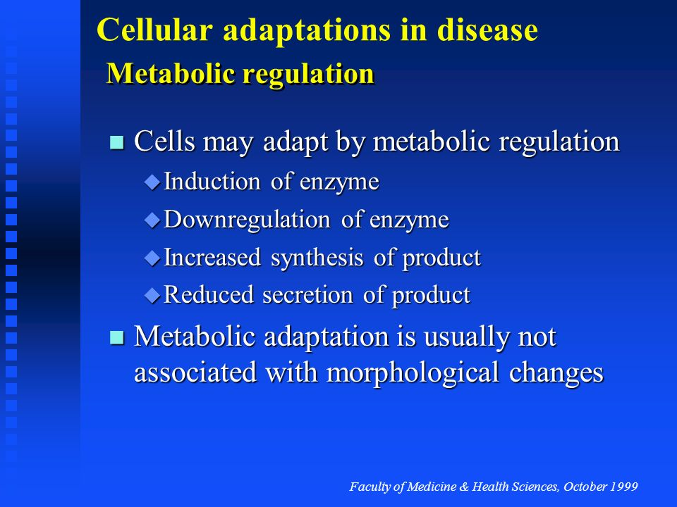 Faculty of Medicine & Health Sciences, October 1999 Cellular adaptations in disease Metabolic regulation Cells may adapt by metabolic regulation Cells may adapt by metabolic regulation Induction of enzyme Induction of enzyme Downregulation of enzyme Downregulation of enzyme Increased synthesis of product Increased synthesis of product Reduced secretion of product Reduced secretion of product Metabolic adaptation is usually not associated with morphological changes Metabolic adaptation is usually not associated with morphological changes
