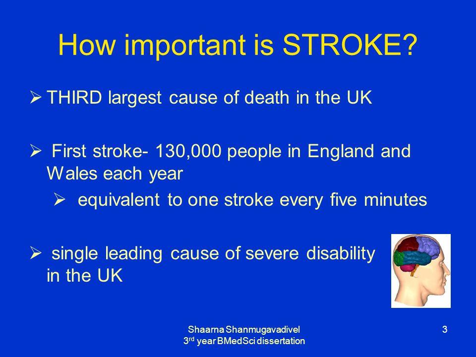 Shaarna Shanmugavadivel 3 rd year BMedSci dissertation 3 How important is STROKE.