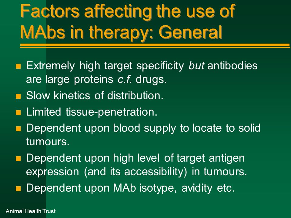 Animal Health Trust Factors affecting the use of MAbs in therapy: General n Extremely high target specificity but antibodies are large proteins c.f. d