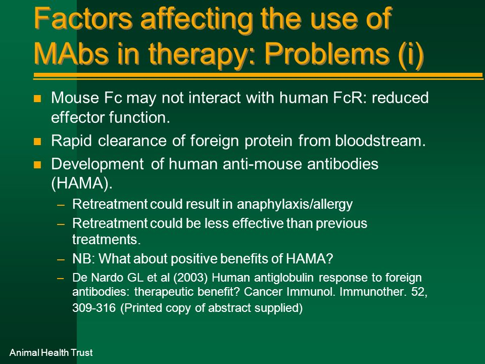 Factors affecting the use of MAbs in therapy: Problems (i) n Mouse Fc may not interact with human FcR: reduced effector function. n Rapid clearance of