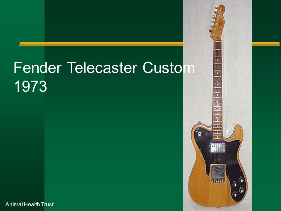Animal Health Trust Fender Telecaster Custom 1973