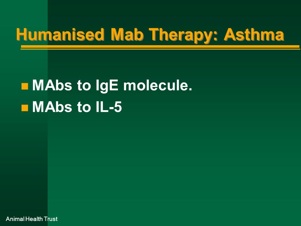 Animal Health Trust Humanised Mab Therapy: Asthma n MAbs to IgE molecule. n MAbs to IL-5