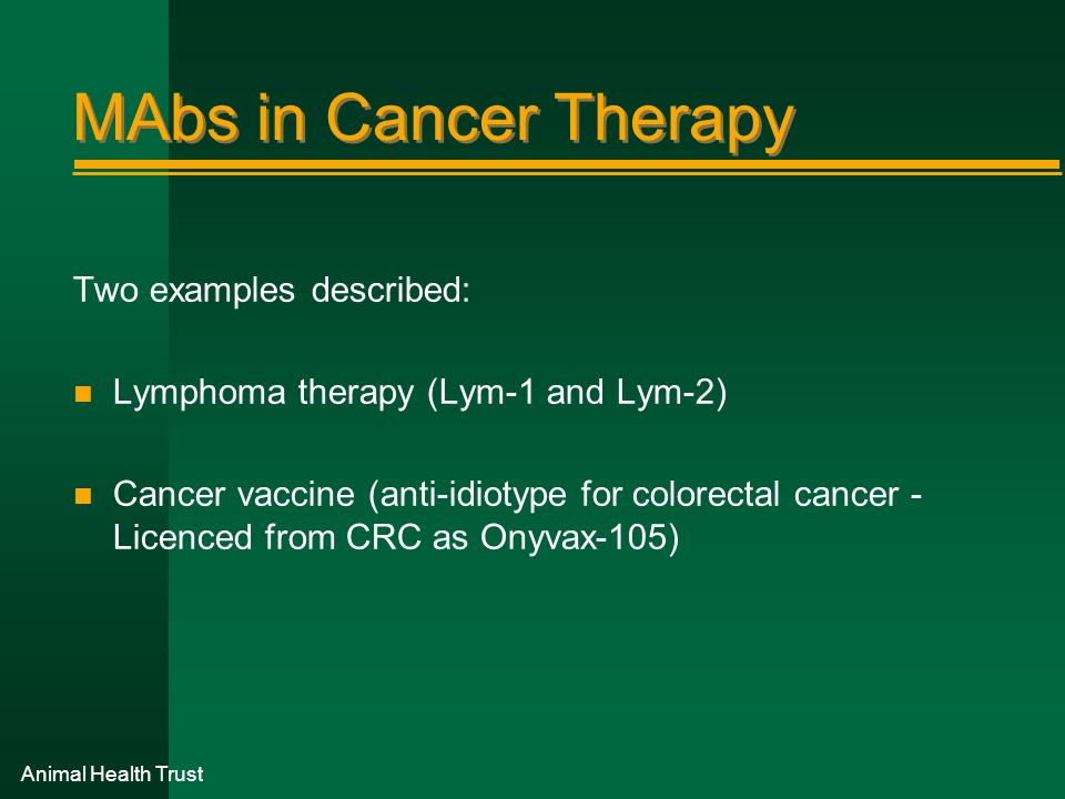 Animal Health Trust MAbs in Cancer Therapy Two examples described: n Lymphoma therapy (Lym-1 and Lym-2) n Cancer vaccine (anti-idiotype for colorectal