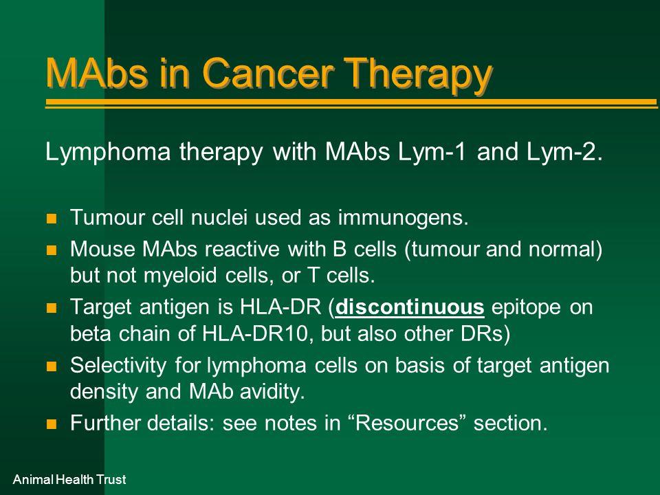 Animal Health Trust MAbs in Cancer Therapy Lymphoma therapy with MAbs Lym-1 and Lym-2. n Tumour cell nuclei used as immunogens. n Mouse MAbs reactive