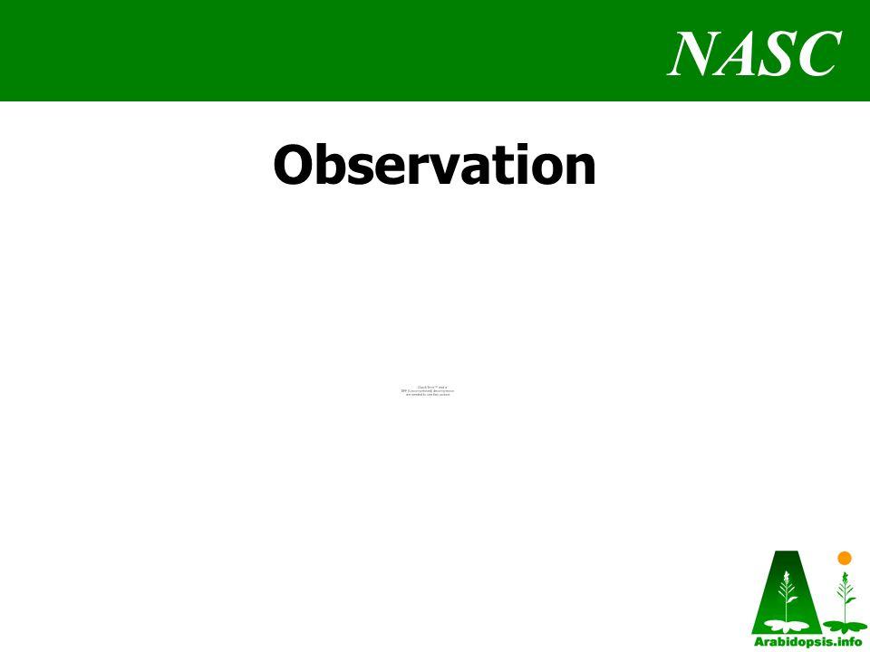 NASC Observation