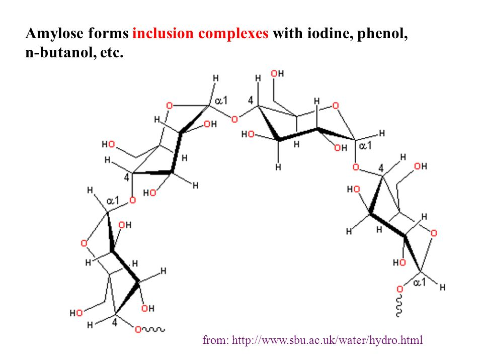 Amylose forms inclusion complexes with iodine, phenol, n-butanol, etc. from: http://www.sbu.ac.uk/water/hydro.html