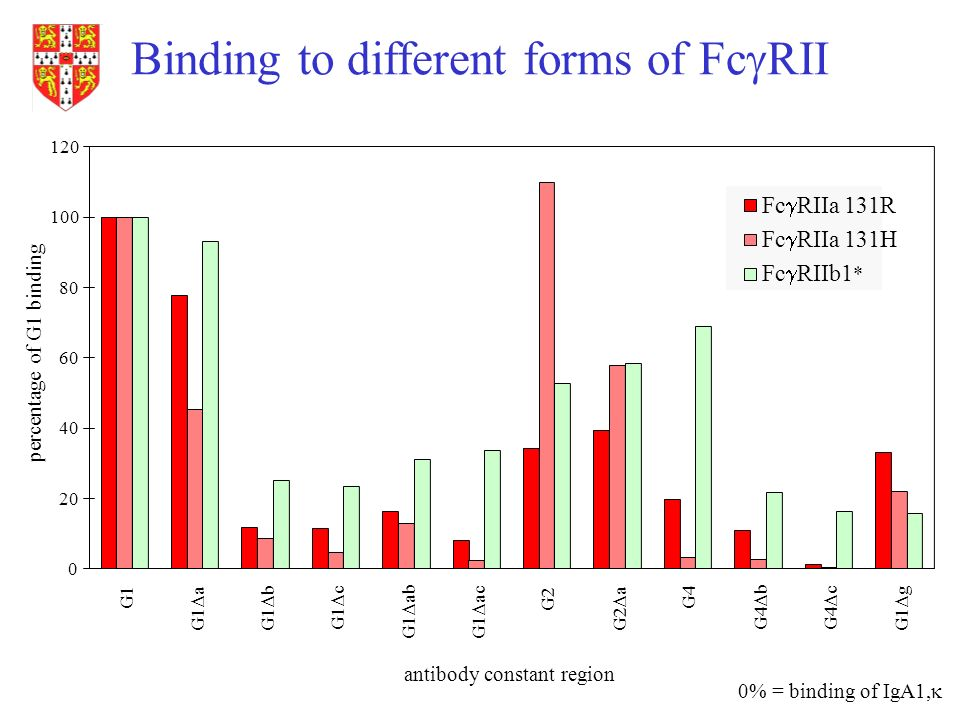 Binding to different forms of Fc RII antibody constant region percentage of G1 binding 0% = binding of IgA1, 0 20 40 60 80 100 120 G1 G1 aG1 b G1 c G1